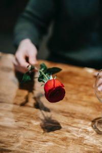 la rose qui fait toujours plaisir aux femmes
