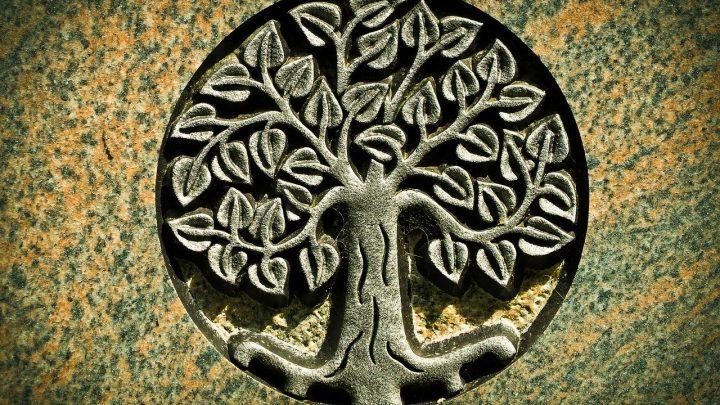 activer l'arbre de vie